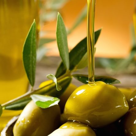 Slow Food premia altri due oli di qualità Calabresi