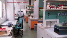 Nuove molecole ad attività anti-HIV sviluppate dal gruppo di ricerca coordinato dal Prof. Bartolo Gabriele