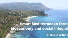 Successo per EFIMED Week 2016 in Calabria