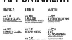 VINITALY 2017. Viaggio inedito nella Calabria del vino con dieci appuntamenti d'autore