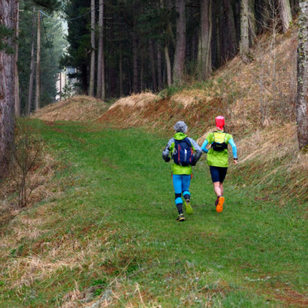 """The eco-runners of """"Keep Clean and Run #pulisciecorri"""" depart Sila National Park"""