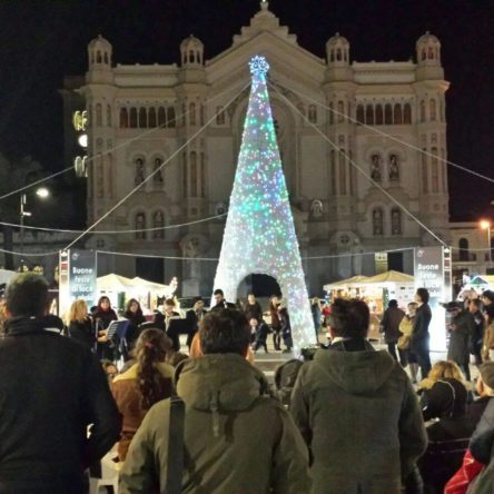 Reggio, December 8th at 5pm, the lighting of the Christmas Tree of Fattoria della Piana, in Piazza Duomo