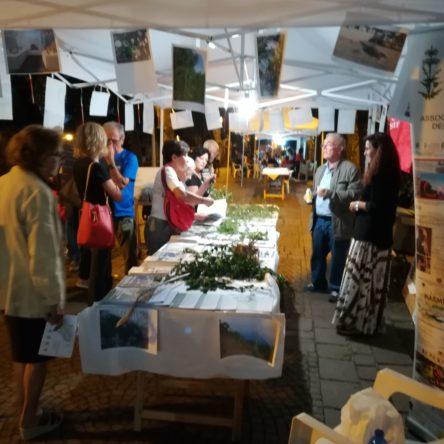 """(Ita) Educare alla cura dell'ambiente: il valore della vegetazione spontanea – Italia Nostra Reggio Calabria A """"Pianaecofestival"""" Edizione 2018"""