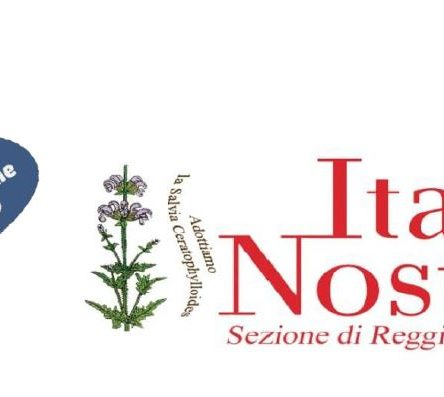 """Una nuova iniziativa di Italia Nostra RC in tempo di """"fermo"""" per la pandemia"""