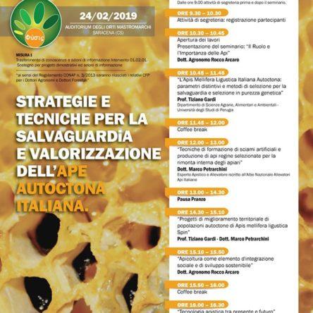 Valorizzazione dell'ape autoctona italiana