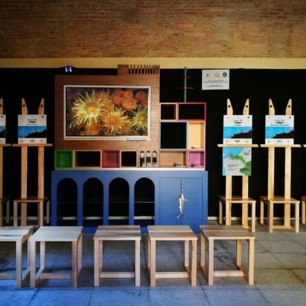 """""""Paesaggio e Mito"""" un itinerario naturalistico virtuale per scoprire e riscoprire i tesori di Scilla"""