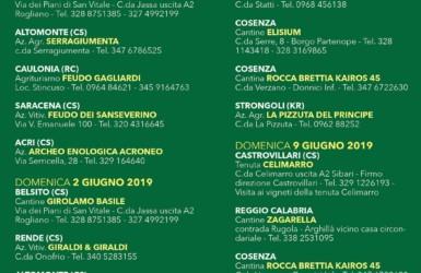 1d75b90042 In Calabria continua la festa del vino e della valorizzazione dei territori