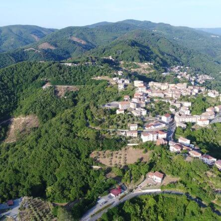 Dove andare in Calabria a dicembre? Vi suggeriamo un tour fiabesco tra i presepi viventi