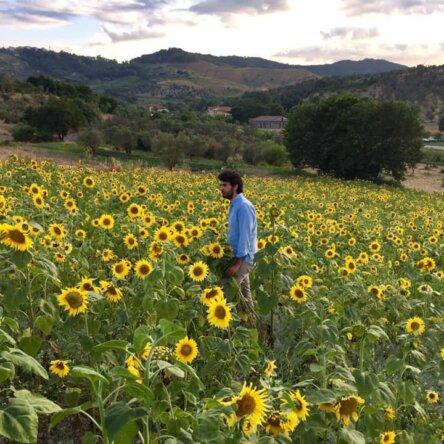 (Ita) Torna la Festa dei girasoli al Mulinum: fiorisce la beneficenza a San Floro