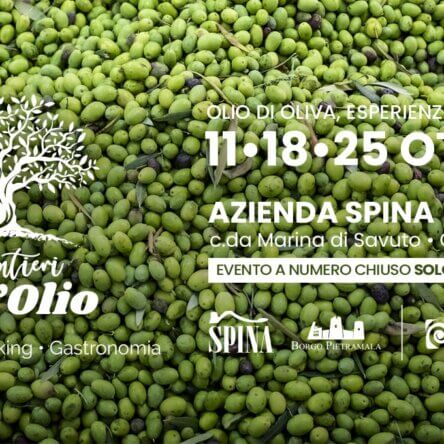 (Ita) I SENTIERI DELL'OLIO olio di oliva esperienza da vivere – Cleto (CS)