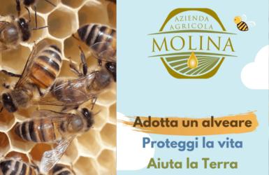 Azienda Agricola Molina